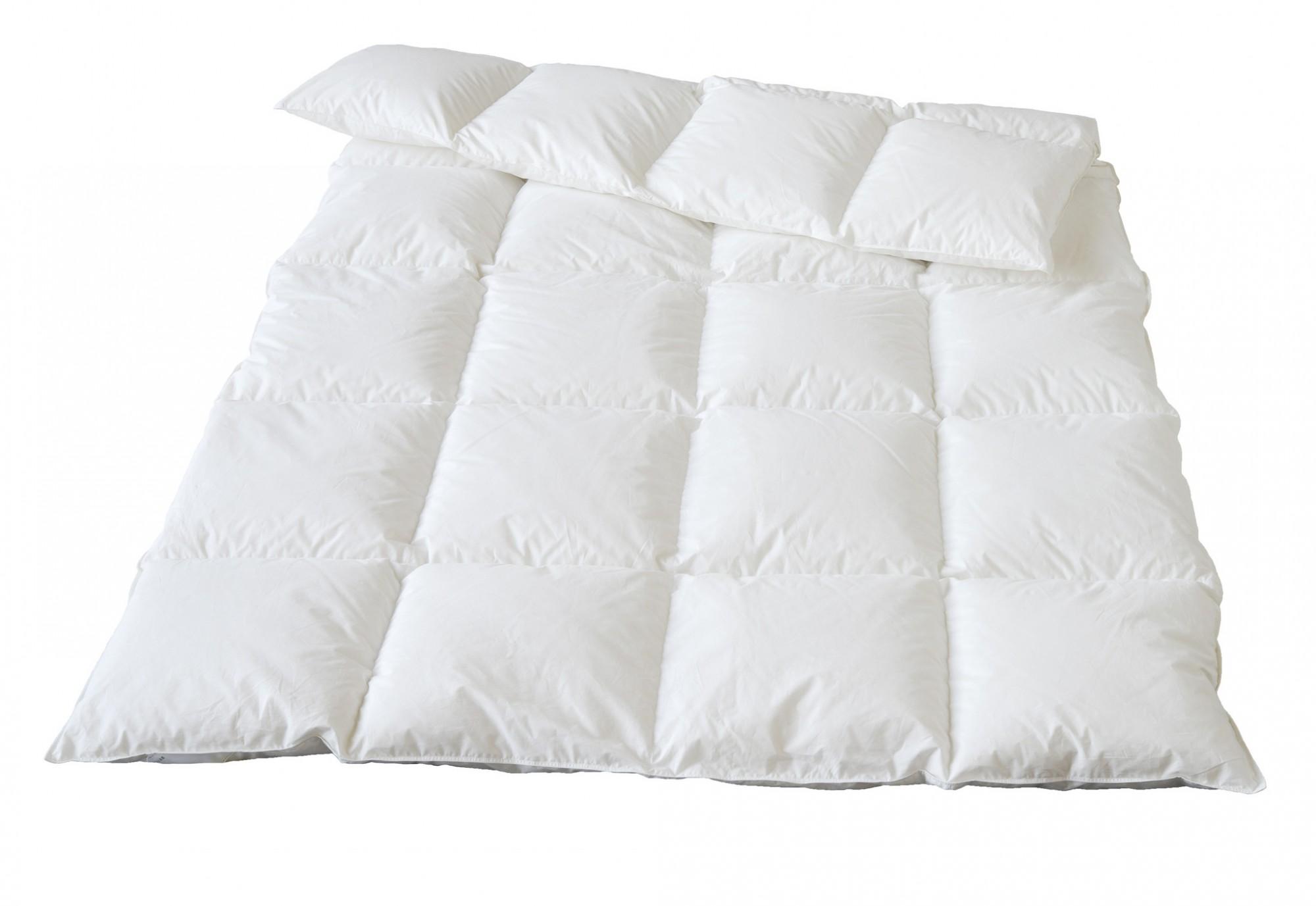 Одеяло пуховое Traumina облегченное 200х220 Plume Bio Daune light WK1