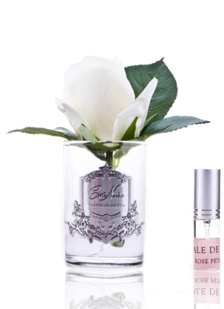 Ароматическая роза Cote Noir Rose bud, цвет слоновая кость